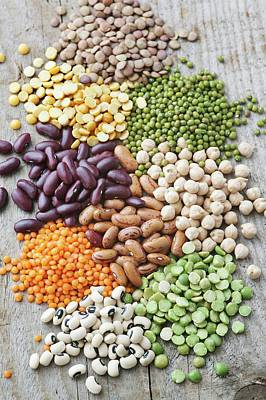 Selection Of Beans Poster by Gustoimages