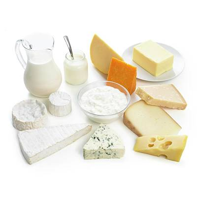 Selection Of Dairy Foods Poster by Science Photo Library