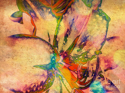 Springtime Floral Abstract Poster