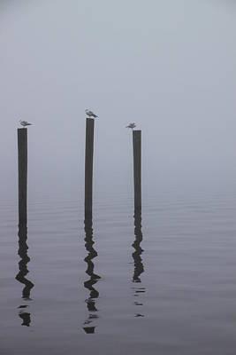 Seneca Lake Morning Mist Poster