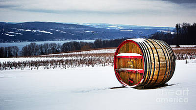 Seneca Lake Winery In Winter Poster