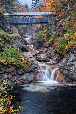 Sentinal Pine Bridge - White Mountains National Forest Poster by Thomas Schoeller