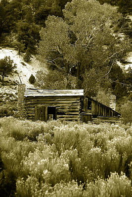Sepia Country Cabin Poster