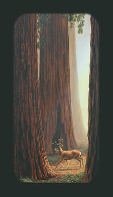 Sequoia Blacktail Deer Phone Case Poster by Crista Forest