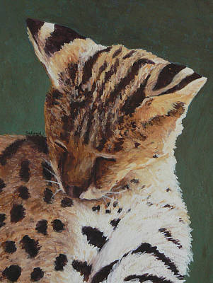 Poster featuring the painting Serval Nap by Margaret Saheed