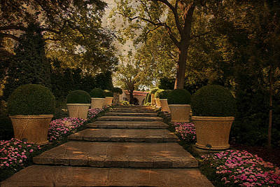 Shady Garden Walk Poster by Cindy Rubin