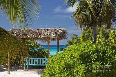 Shady View - Bahamas Poster by Brian Jannsen