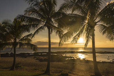 Sharks Cove Sunset 2 - Oahu Hawaii Poster by Brian Harig
