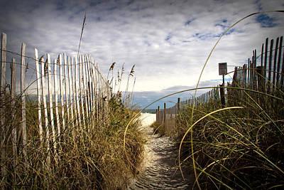 Shell Island Beach Access Poster by Phil Mancuso