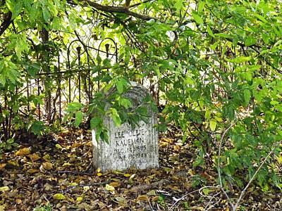 Sheltered Grave Poster