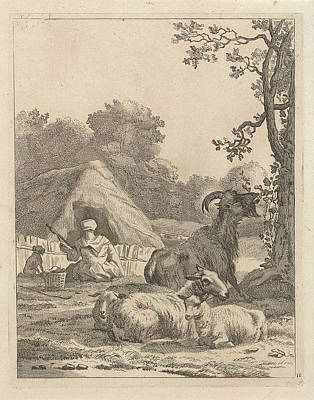 Shepherdess With Sheep And A Goat, Anonymous Poster by Anonymous And Karel Dujardin