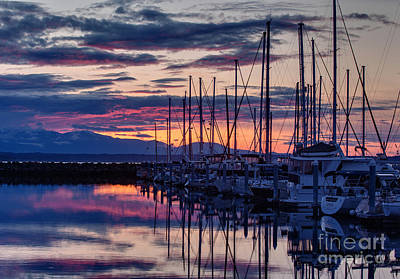 Shilshole Olympic Mountains Sunset Poster by Mike Reid
