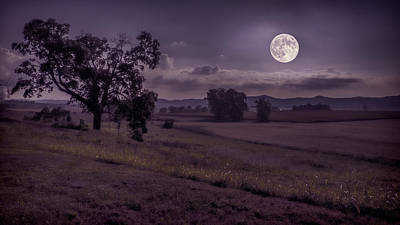 Poster featuring the photograph Shine On Harvest Moon by Jaki Miller