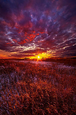 Shine Silently Poster by Phil Koch