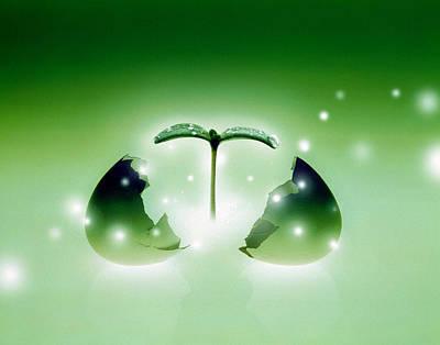 Shiny Green Egg Bursting In Two Poster
