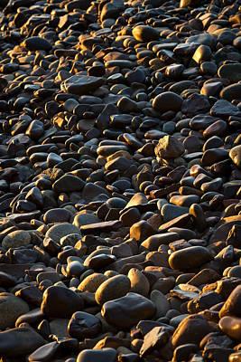 Shore Stones Poster by Steve Gadomski