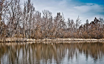 Poster featuring the photograph Shoreline 5a by Greg Jackson