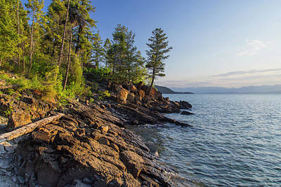 Shoreline Of Flathead Lake Receives Poster by Chuck Haney