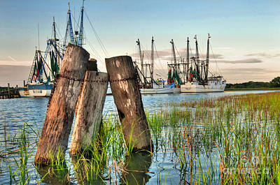 Shrimp Dock Pilings Poster