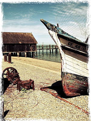 Shrimping Boat At China Camp Poster by Amy Fearn