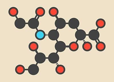 Sialic Acid Molecule Poster