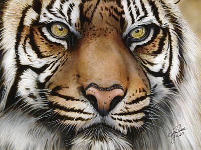 Siberian Tiger Closeup Poster