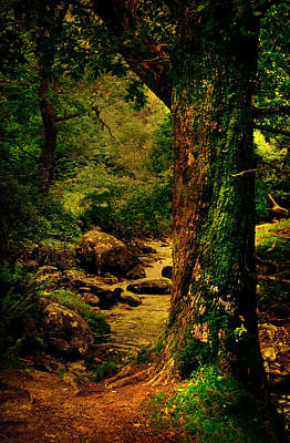 Silent Storyteller. Glendalough. Ireland Poster by Jenny Rainbow