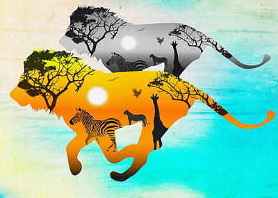 Silhouette Lions On A Hunt.  Poster
