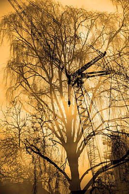 Silhouette Of Trees And Crane Poster