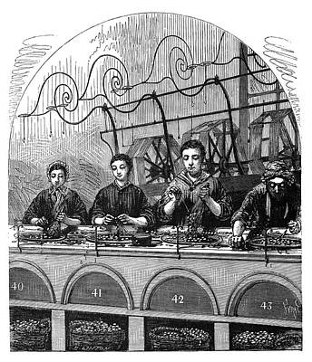 Silk Spinning Poster by Science Photo Library