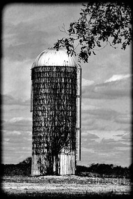 Silo Vine Covered  Hdr Bw Poster