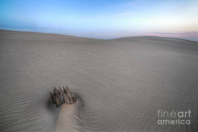 Silver Lake Sand Dunes Poster by Twenty Two North Photography