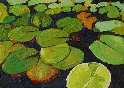 Singleton Lily Pads Poster by Phil Chadwick