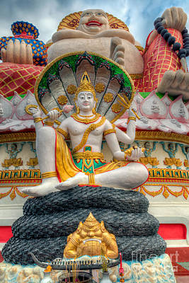 Sitting Buddhas Poster