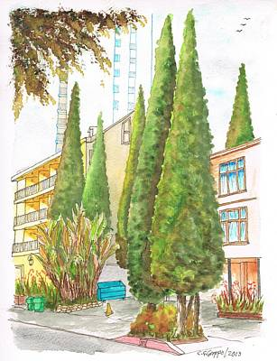 Six Sad Cypresses At 8700 Shoreham Dr In The Hollywood Hills-california Poster by Carlos G Groppa