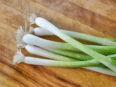 Six Scallions Poster by Michelle Calkins