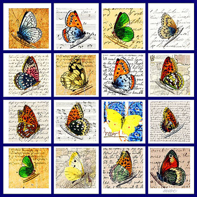 Sixteen Butterflies Poster by Marian Cates