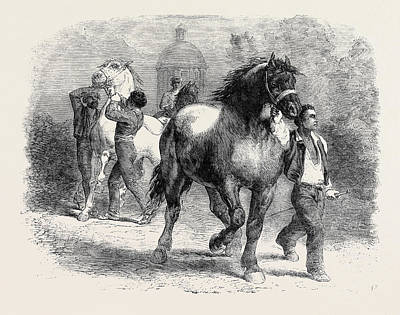 Sketch From The Horse Fair Poster by Bonheur, Rosa, (1822-1899), French