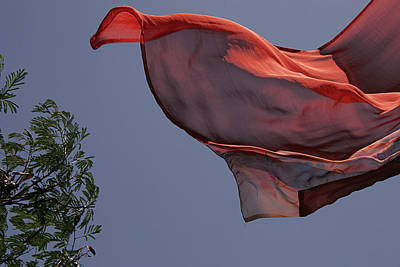 Poster featuring the photograph Skc 0958 The Flying Saree by Sunil Kapadia