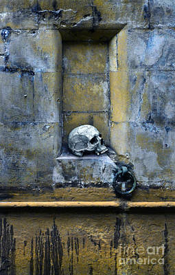 Skull In Wall Poster by Jill Battaglia