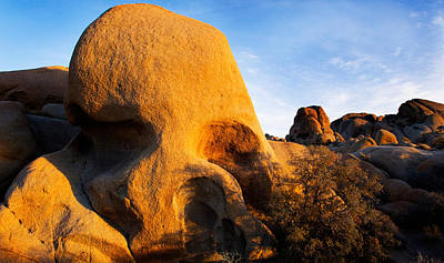 Skull Rock Formations, Joshua Tree Poster by Panoramic Images