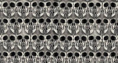 Skulls 2 Poster