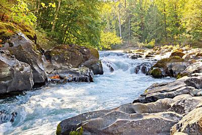 Skutz Falls At Cowichan River Provincial Park Poster