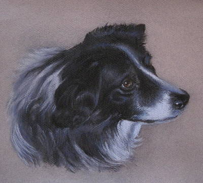 Poster featuring the painting Skye by Patricia Schneider Mitchell