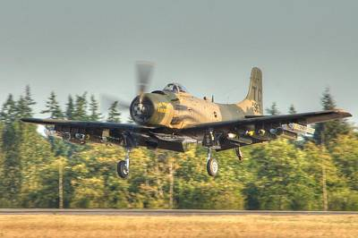 Skyraider Poster by Jeff Cook