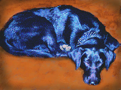Sleeping Blue Dog Labrador Retriever Poster by Ann Powell
