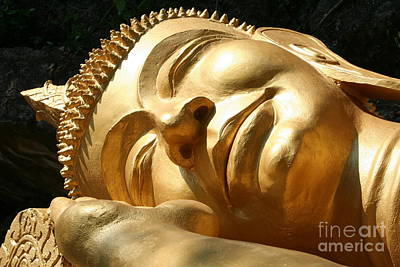 Poster featuring the photograph Sleeping Buddha by Nola Lee Kelsey