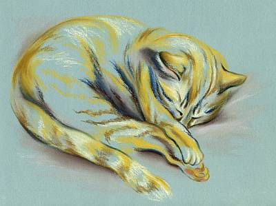 Sleeping Tabby Kitten Poster by MM Anderson