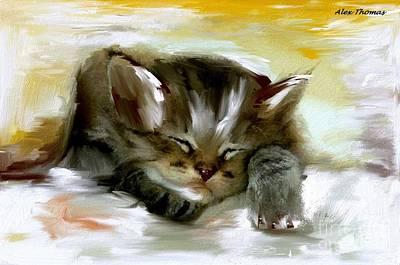 Sleepy Kittie  Poster by Alex Thomas