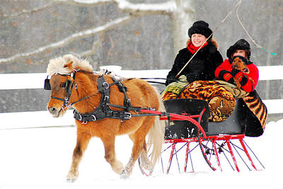 Poster featuring the photograph Sleigh Ride by James Kirkikis
